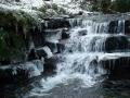 frozen-wend-lg