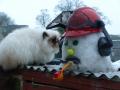 snow-workman-lg