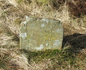 Robert Wilson Headstone